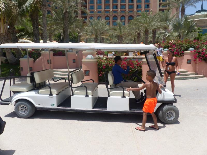 [TR Avril-mai 2018] Un voyage fou à Dubaï : des parcs, de la nourriture, du désert et un hôtel de luxe ! - Page 4 P1070228
