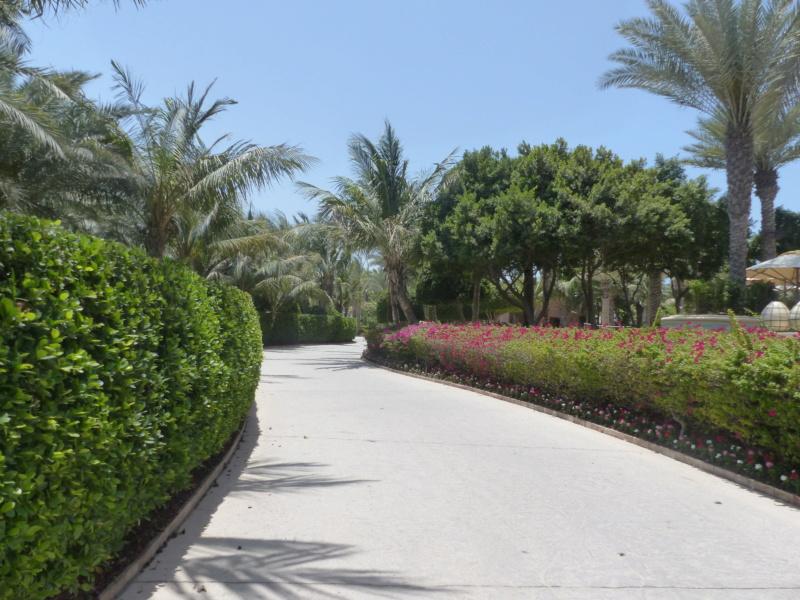 [TR Avril-mai 2018] Un voyage fou à Dubaï : des parcs, de la nourriture, du désert et un hôtel de luxe ! - Page 4 P1070229