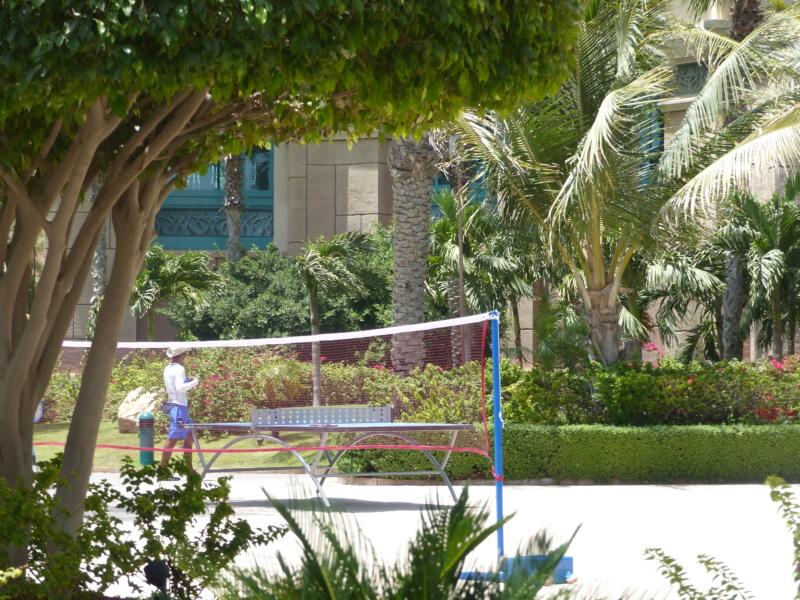 [TR Avril-mai 2018] Un voyage fou à Dubaï : des parcs, de la nourriture, du désert et un hôtel de luxe ! - Page 4 P1070231