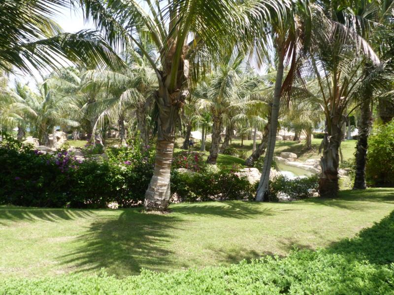 [TR Avril-mai 2018] Un voyage fou à Dubaï : des parcs, de la nourriture, du désert et un hôtel de luxe ! - Page 4 P1070249