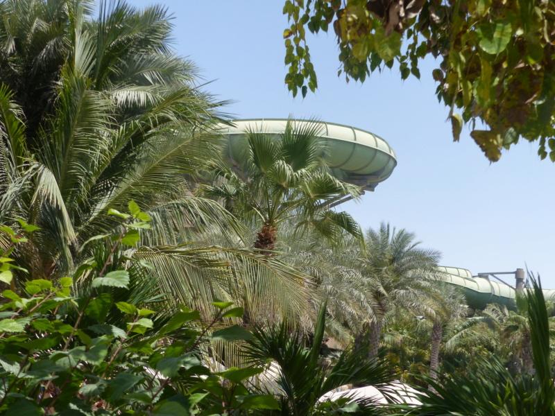 [TR Avril-mai 2018] Un voyage fou à Dubaï : des parcs, de la nourriture, du désert et un hôtel de luxe ! - Page 4 P1070251