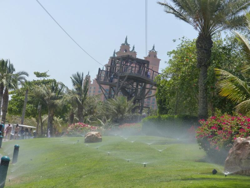 [TR Avril-mai 2018] Un voyage fou à Dubaï : des parcs, de la nourriture, du désert et un hôtel de luxe ! - Page 4 P1070255
