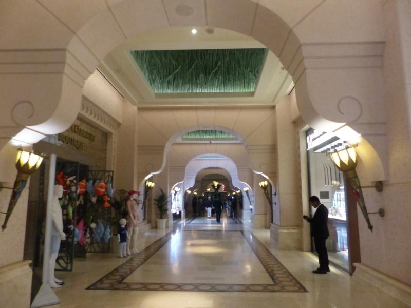 [TR Avril-mai 2018] Un voyage fou à Dubaï : des parcs, de la nourriture, du désert et un hôtel de luxe ! - Page 4 P1070269
