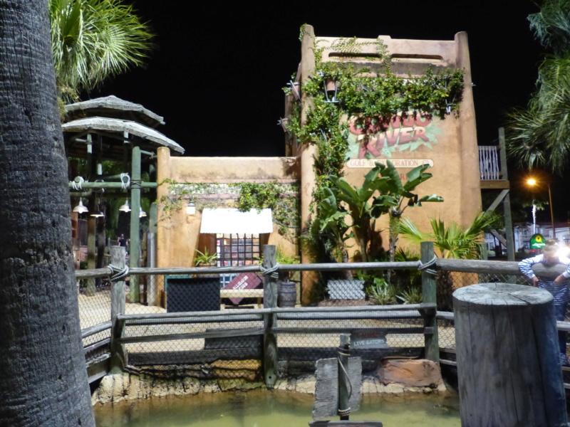[Halloween 2018] Universal Studios, Disney Cruise Line dans les caraïbes et Gatorland P1120147