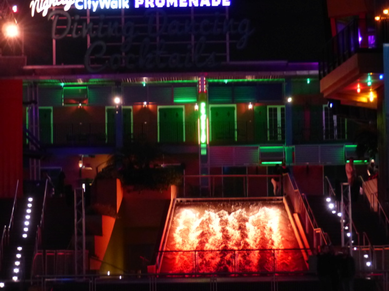 [Halloween 2018] Universal Studios, Disney Cruise Line dans les caraïbes et Gatorland - Page 2 P1120339