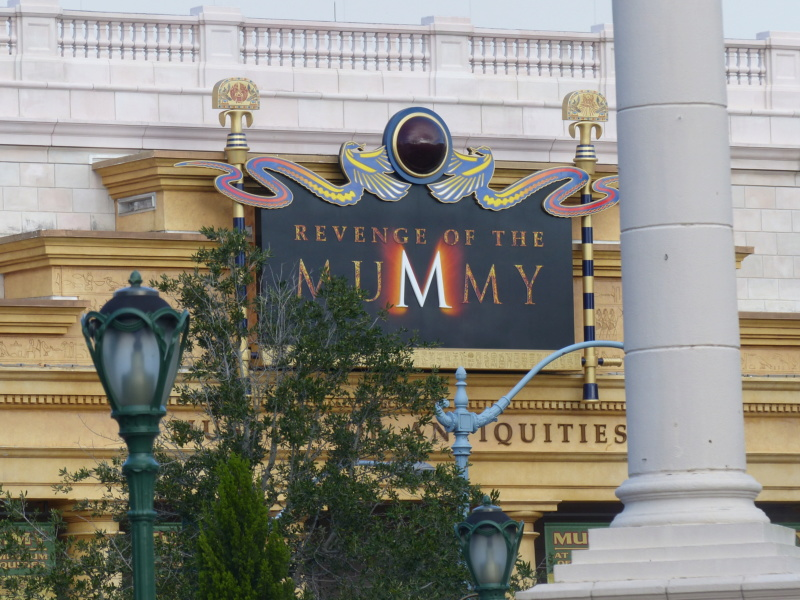 [Halloween 2018] Universal Studios, Disney Cruise Line dans les caraïbes et Gatorland - Page 2 P1120453