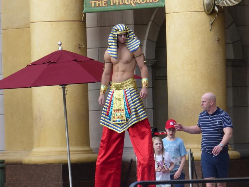 [Halloween 2018] Universal Studios, Disney Cruise Line dans les caraïbes et Gatorland - Page 2 P1120455