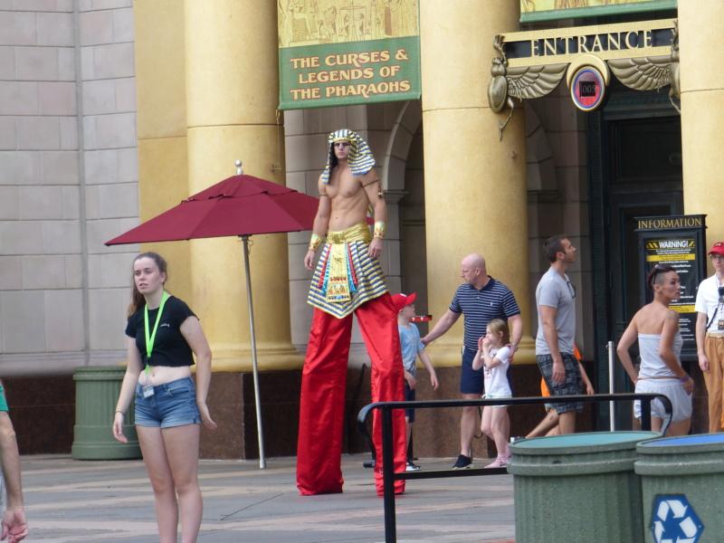 [Halloween 2018] Universal Studios, Disney Cruise Line dans les caraïbes et Gatorland - Page 2 P1120456