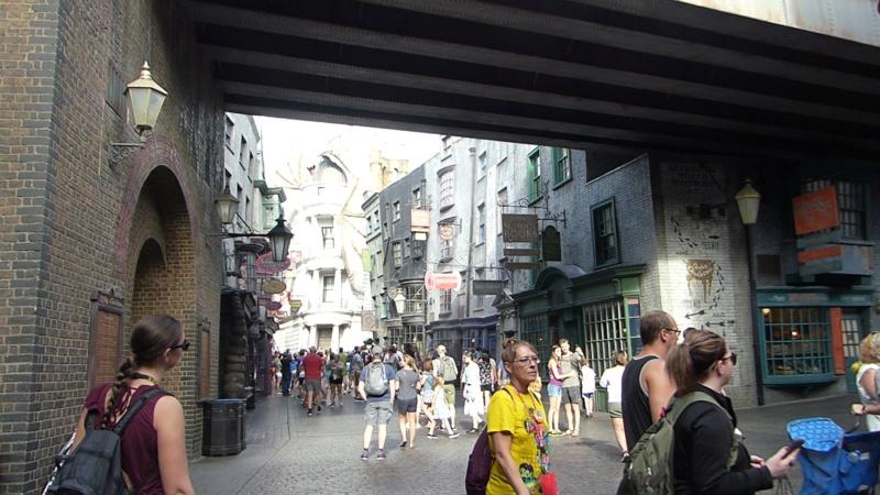 [Halloween 2018] Universal Studios, Disney Cruise Line dans les caraïbes et Gatorland - Page 2 P1120476