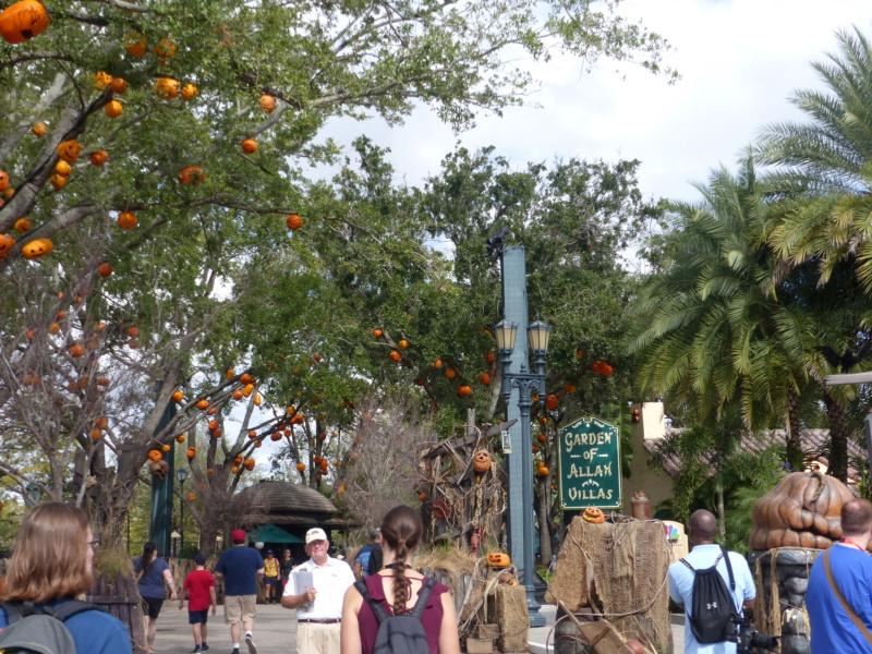 [Halloween 2018] Universal Studios, Disney Cruise Line dans les caraïbes et Gatorland - Page 2 P1120529