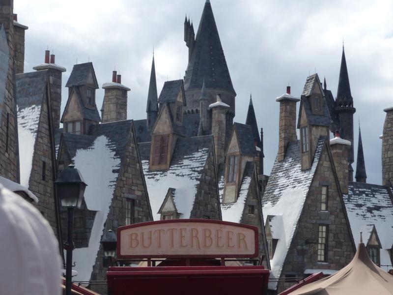 [Halloween 2018] Universal Studios, Disney Cruise Line dans les caraïbes et Gatorland - Page 3 P1120633