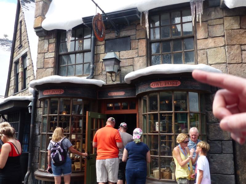 [Halloween 2018] Universal Studios, Disney Cruise Line dans les caraïbes et Gatorland - Page 3 P1120647