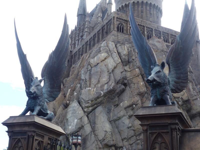 [Halloween 2018] Universal Studios, Disney Cruise Line dans les caraïbes et Gatorland - Page 3 P1120723