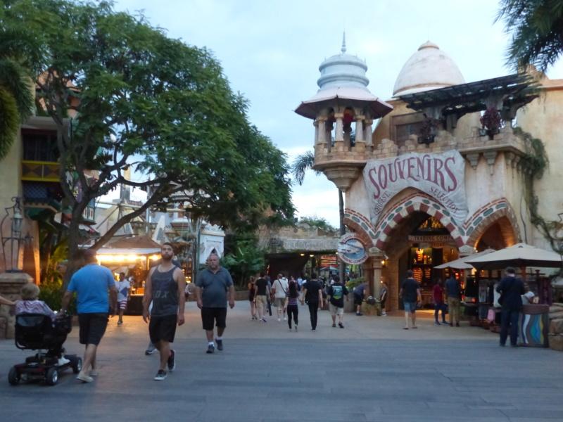 [Halloween 2018] Universal Studios, Disney Cruise Line dans les caraïbes et Gatorland - Page 3 P1120873