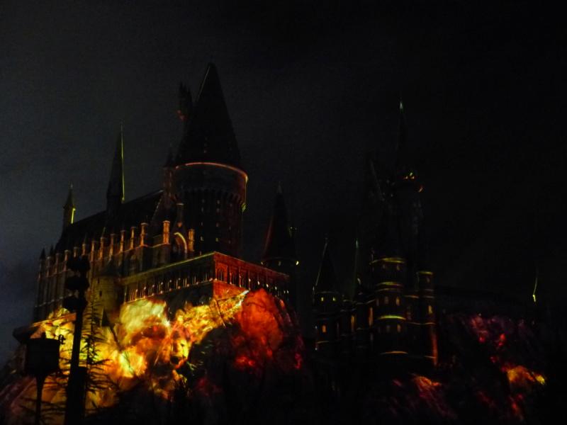 [Halloween 2018] Universal Studios, Disney Cruise Line dans les caraïbes et Gatorland - Page 3 P1130015