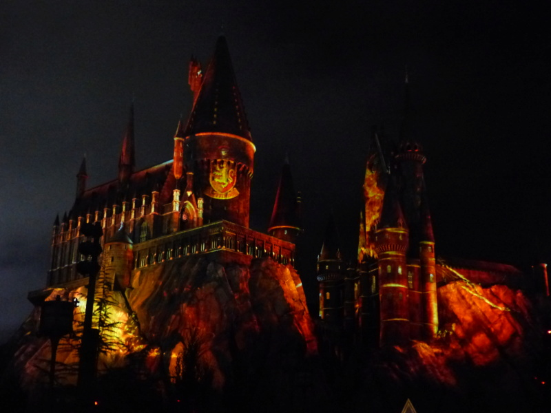 [Halloween 2018] Universal Studios, Disney Cruise Line dans les caraïbes et Gatorland - Page 3 P1130018