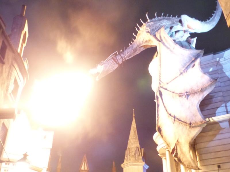 [Halloween 2018] Universal Studios, Disney Cruise Line dans les caraïbes et Gatorland - Page 3 P1130130