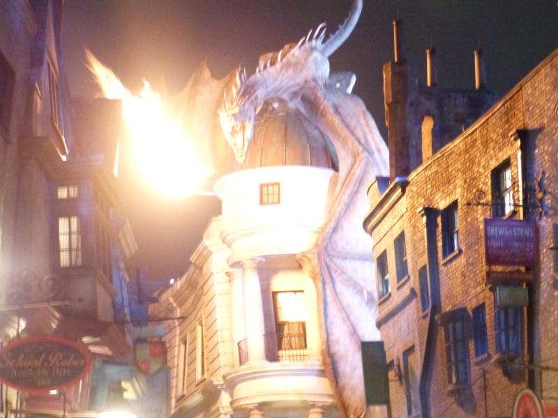 [Halloween 2018] Universal Studios, Disney Cruise Line dans les caraïbes et Gatorland - Page 3 P1130143