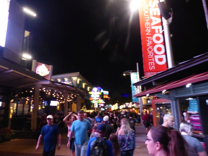 [Halloween 2018] Universal Studios, Disney Cruise Line dans les caraïbes et Gatorland - Page 3 P1130321