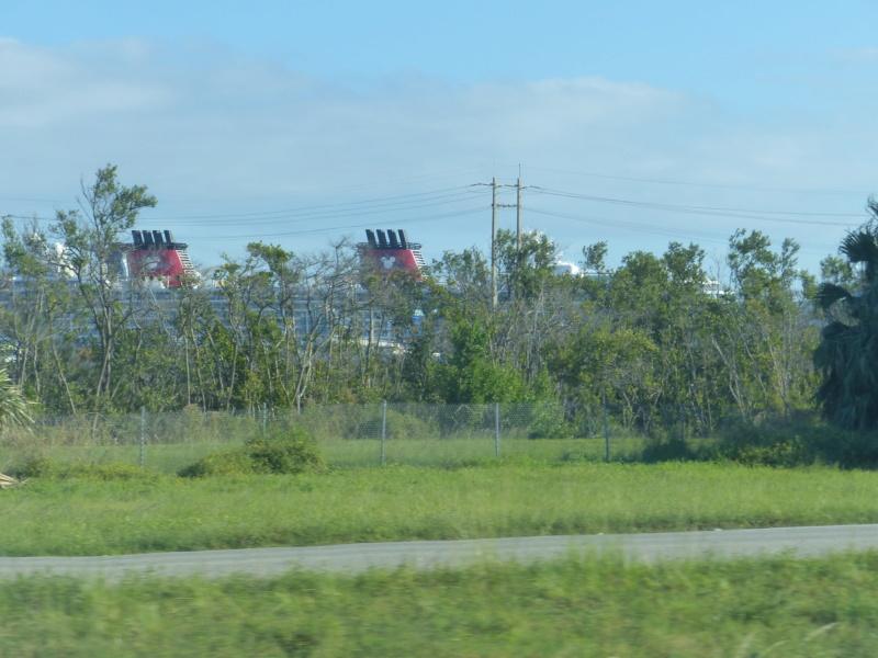 [Halloween 2018] Universal Studios, Disney Cruise Line dans les caraïbes et Gatorland - Page 4 P1130432