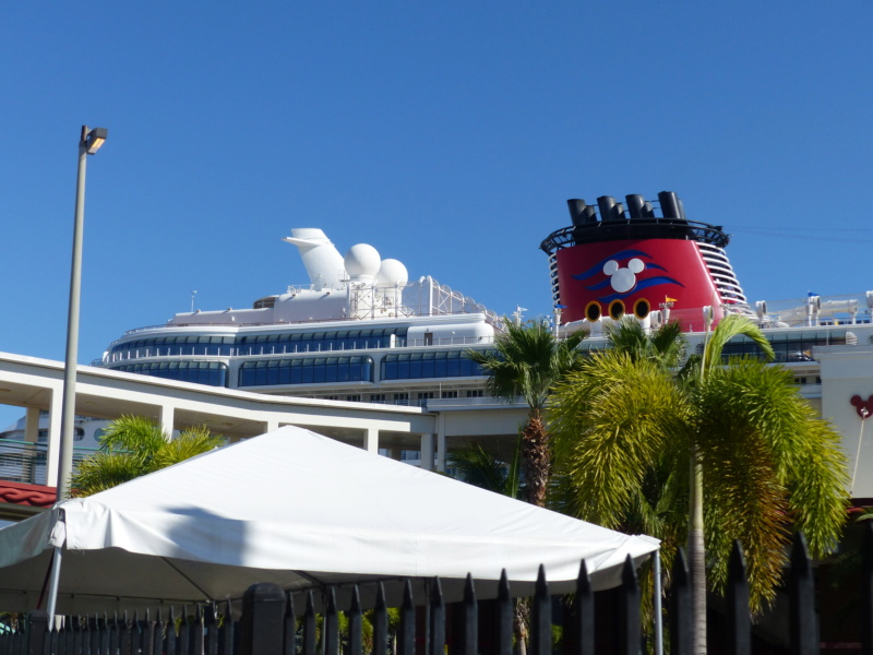 [Halloween 2018] Universal Studios, Disney Cruise Line dans les caraïbes et Gatorland - Page 4 P1130523