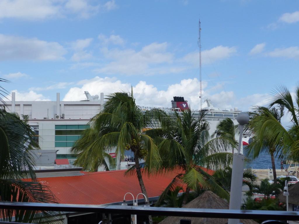 [Halloween 2018] Universal Studios, Disney Cruise Line dans les caraïbes et Gatorland - Page 8 P1140176