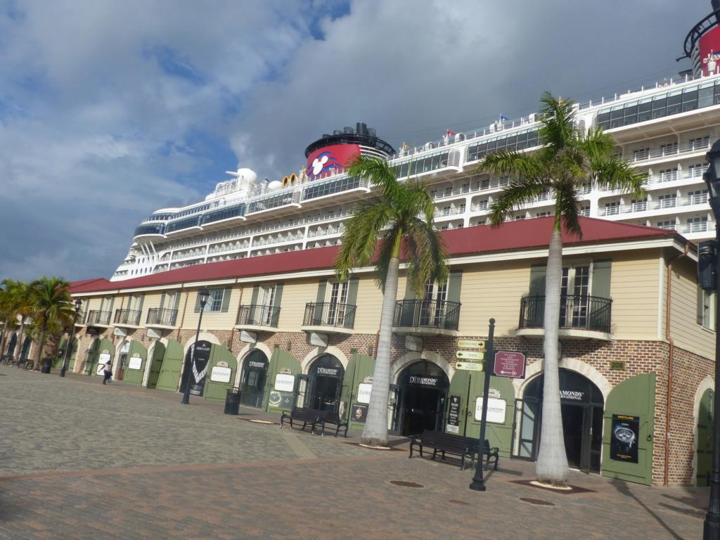 [Halloween 2018] Universal Studios, Disney Cruise Line dans les caraïbes et Gatorland - Page 11 P1150816