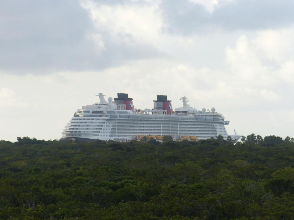 [Halloween 2018] Universal Studios, Disney Cruise Line dans les caraïbes et Gatorland - Page 13 P1160712