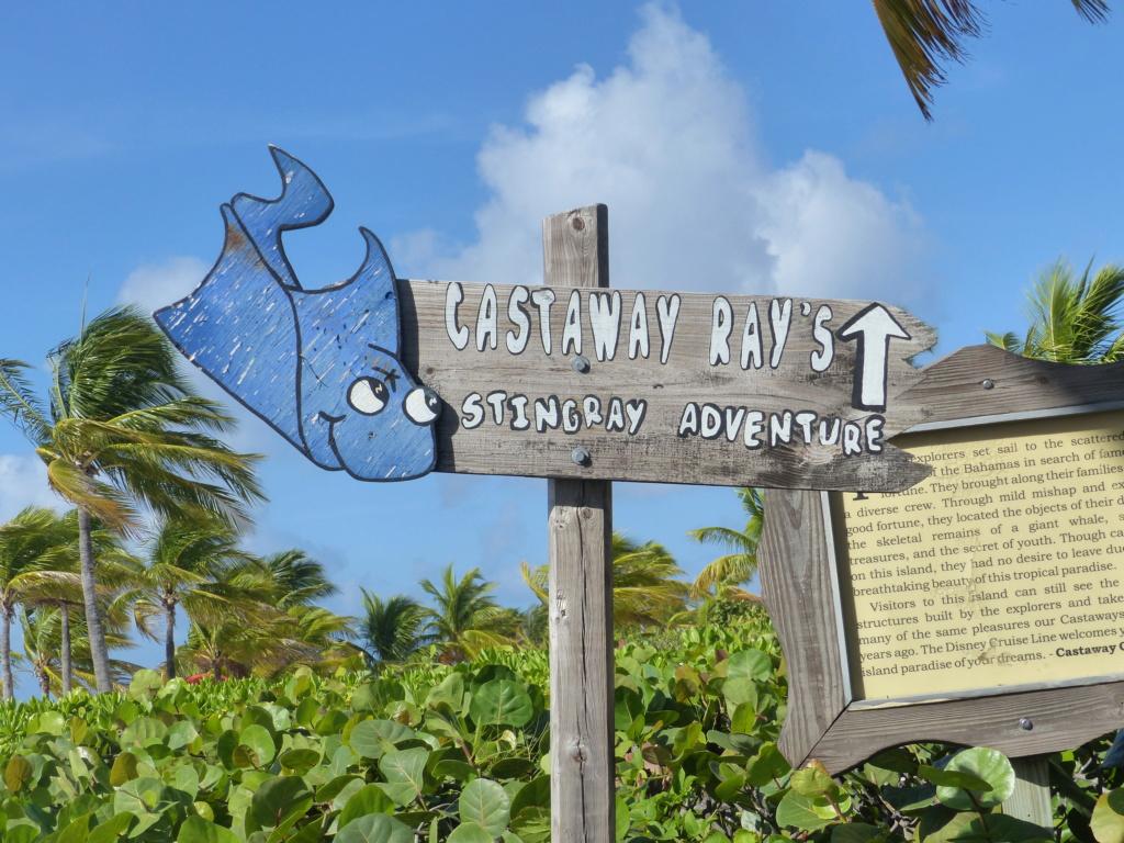 [Halloween 2018] Universal Studios, Disney Cruise Line dans les caraïbes et Gatorland - Page 13 P1160750