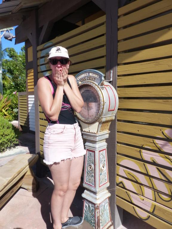[Halloween 2018] Universal Studios, Disney Cruise Line dans les caraïbes et Gatorland - Page 13 P1160818
