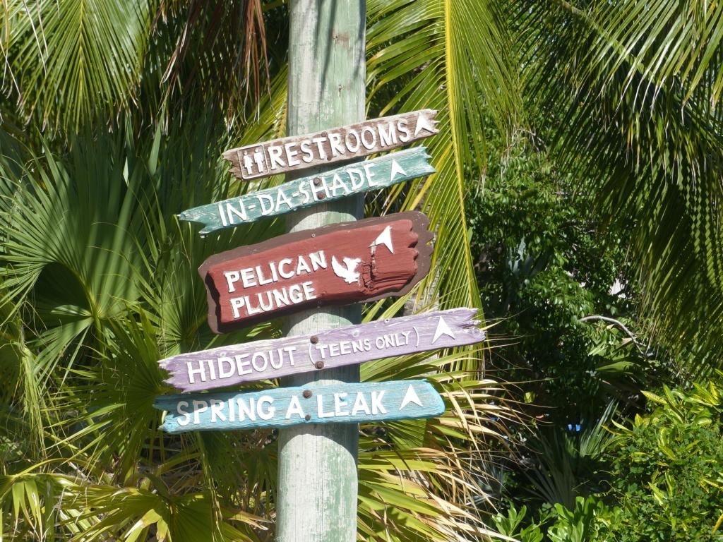 [Halloween 2018] Universal Studios, Disney Cruise Line dans les caraïbes et Gatorland - Page 13 P1160831