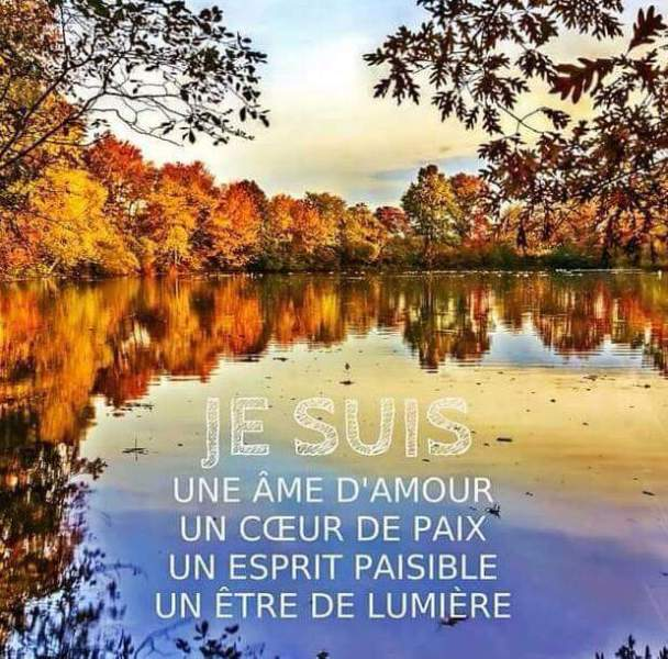 Citations que nous aimons - Page 4 Je_sui10