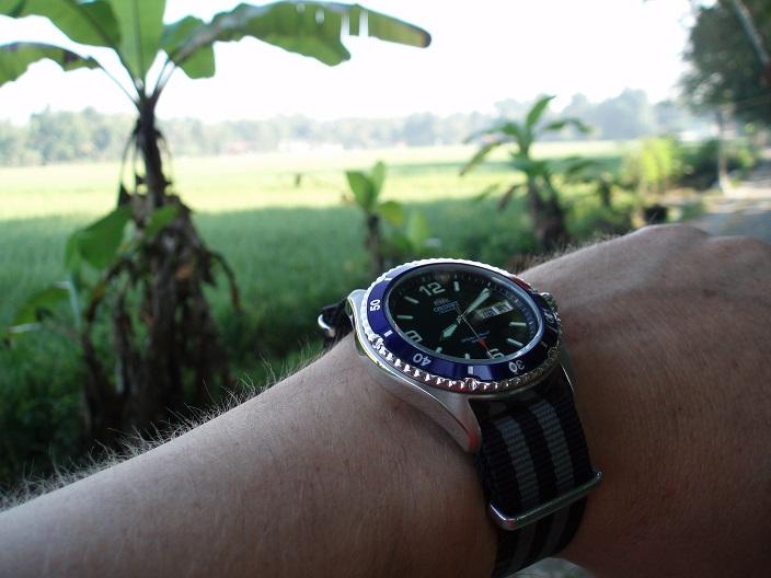 Votre montre du jour - Page 6 P7060010