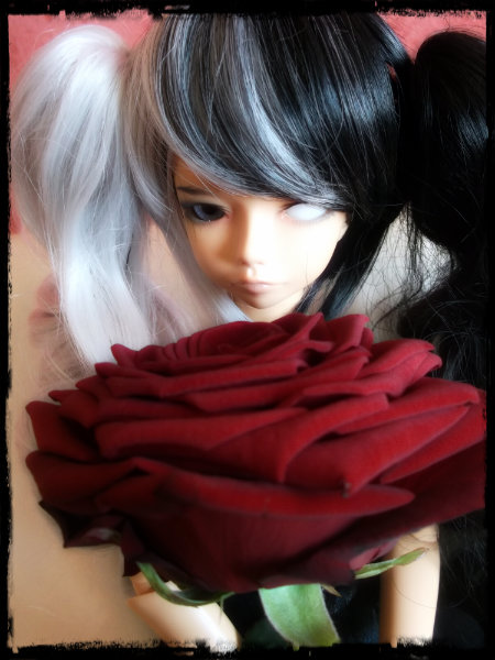 [DC Bella & SD Shaun] Poison (11/07) Dscf4138
