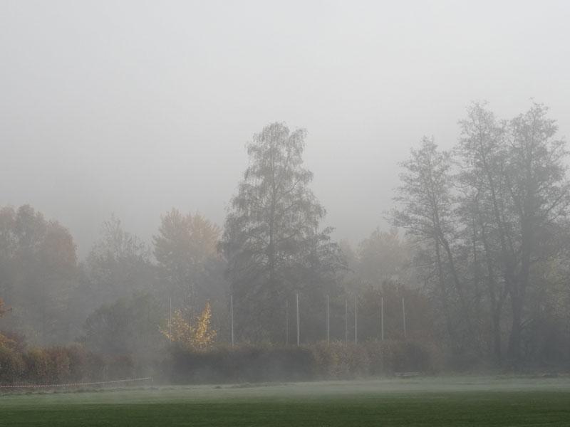 Herbst  - Seite 2 Herbst13