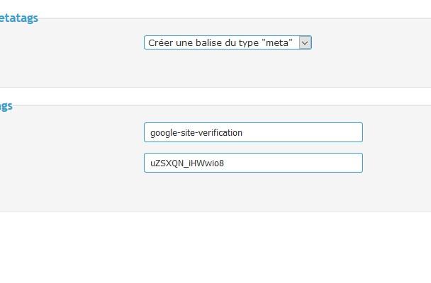 Propriété non validé search console Sans_t16