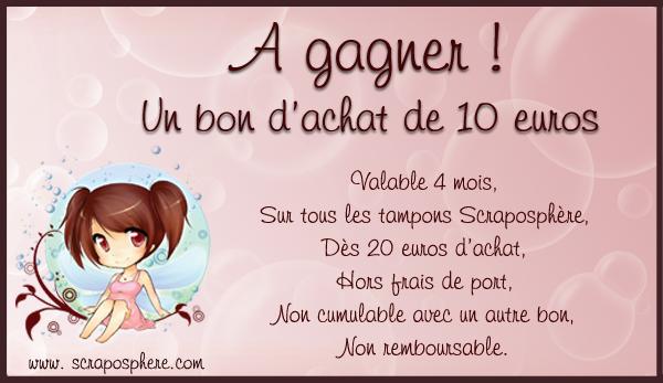 Challenge Novembre / Décembre - Michelle Cadeau10