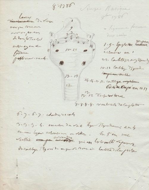 Ecrit et croquis du Médecin Vicq d'Azir 2lu4xp10