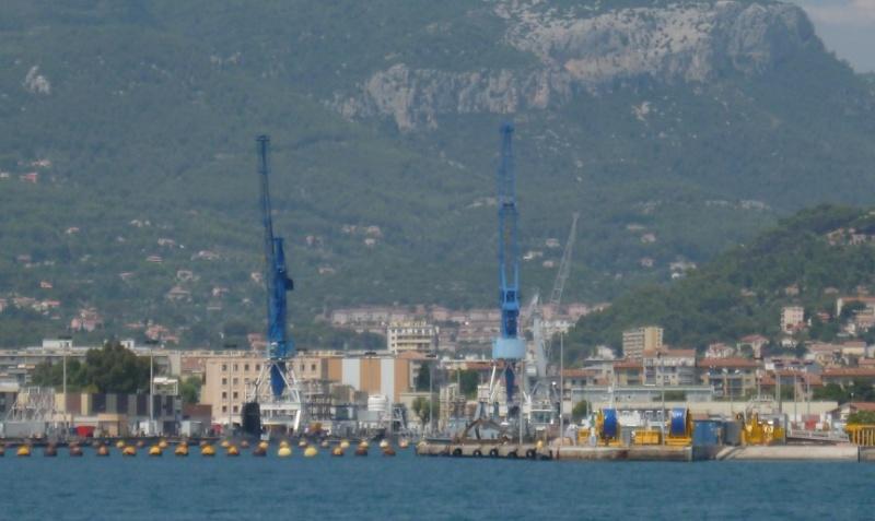 les grues de l'Arsenal de Toulon P1010712