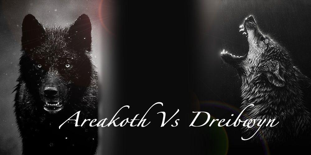 Areakoth vs Dreibwyn