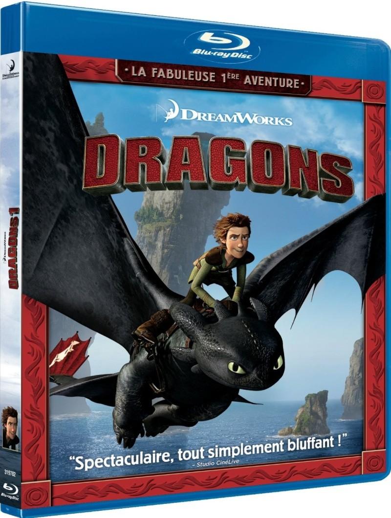 Dragons pour les débutants Dragon11