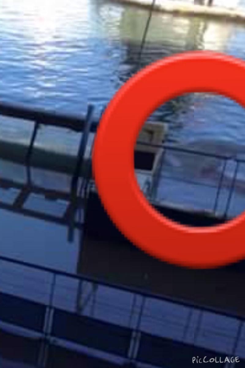 [New Marineland] Innondation - Page 2 Image10
