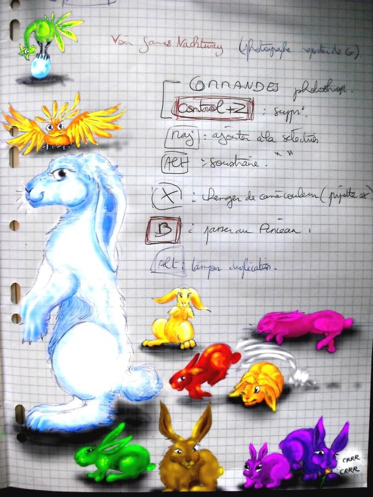 Dragons, chimères et créatures arc-en-ciel - Page 8 Cours_10
