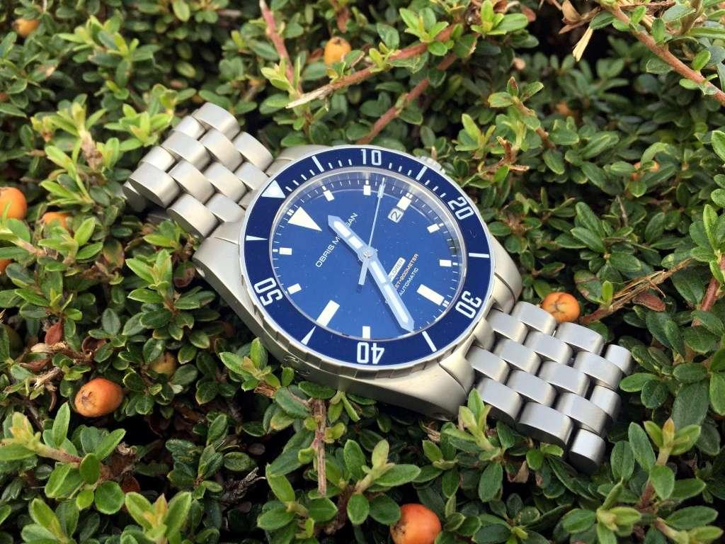 Aimez vous les bleues???!!!  - Page 2 Om_exp10