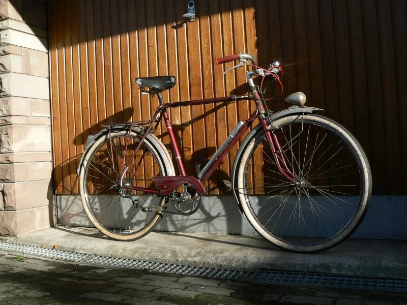 Janius 50's P1030223