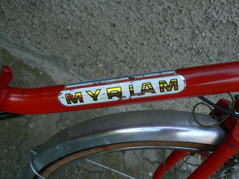 Pliant Myriam 600 P1030518