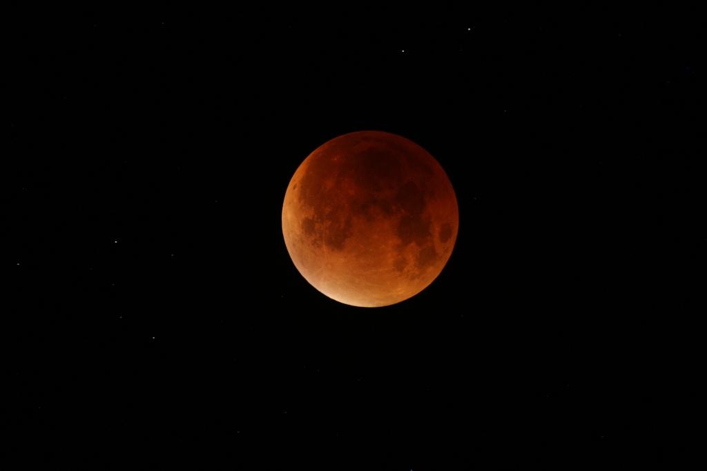 Eclipse à Cavarc  Img_9310