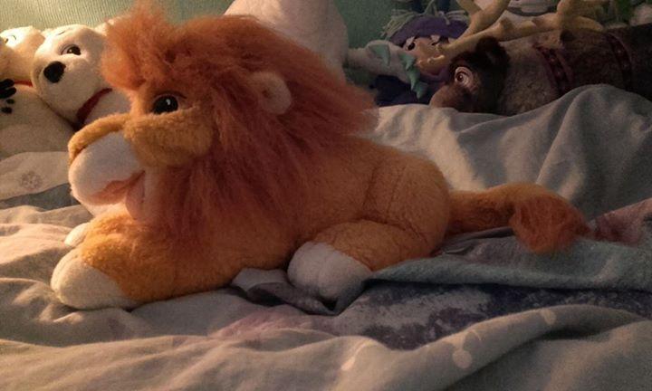 Le Roi Lion - Page 13 12043210
