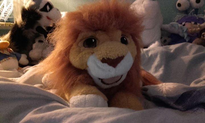 Le Roi Lion - Page 13 12049610