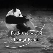 Le fil pour se détendre sans se donner de fil à retordre Panda10
